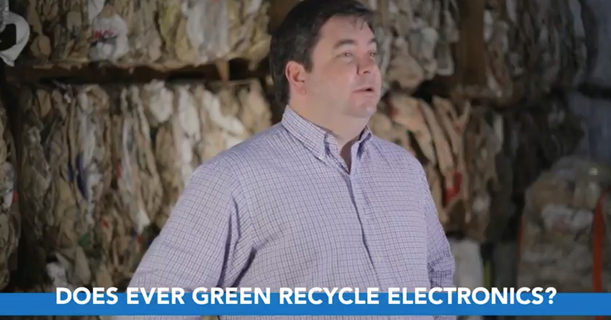 Client Spotlight | Ever Green Environmental